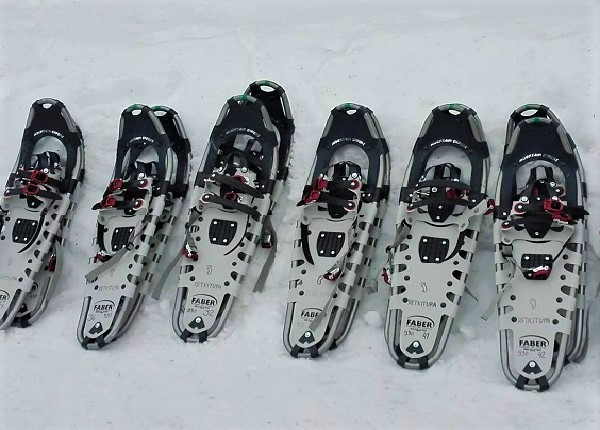 Image: Snowshoes in snow ready for a tour.