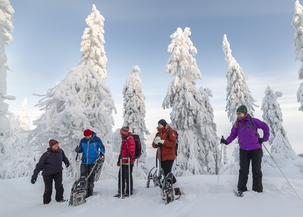 Image: Group on a snowshoe tour having a break in winter forest of Koli National Park.