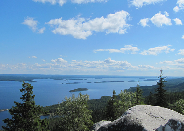 Image: A view from Ukko-Koli
