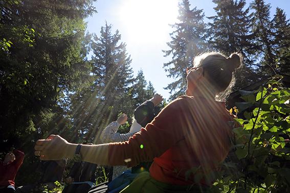 Kuva: Ihmisiä metsässä ilta-auringossa