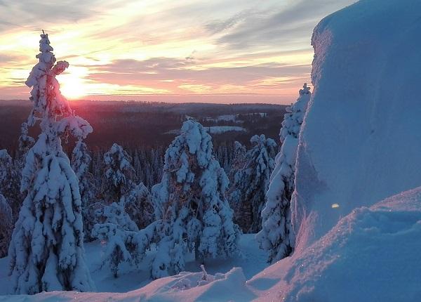 Image: A view from Ukko-Koli